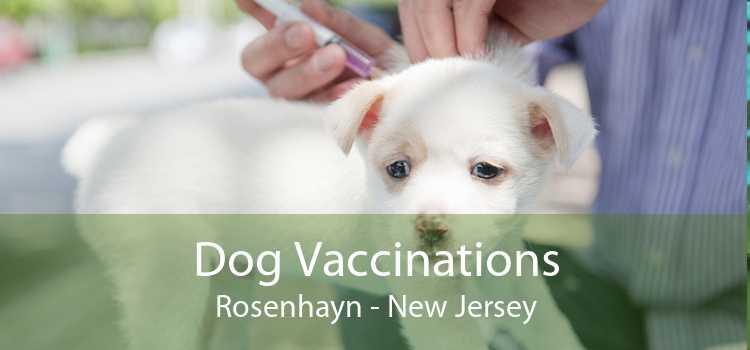 Dog Vaccinations Rosenhayn - New Jersey