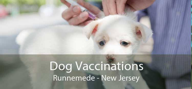 Dog Vaccinations Runnemede - New Jersey