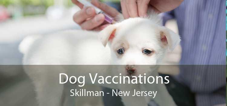 Dog Vaccinations Skillman - New Jersey
