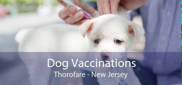 Dog Vaccinations Thorofare - New Jersey