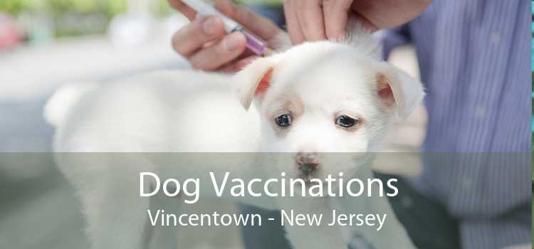 Dog Vaccinations Vincentown - New Jersey