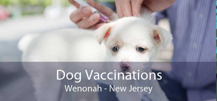 Dog Vaccinations Wenonah - New Jersey
