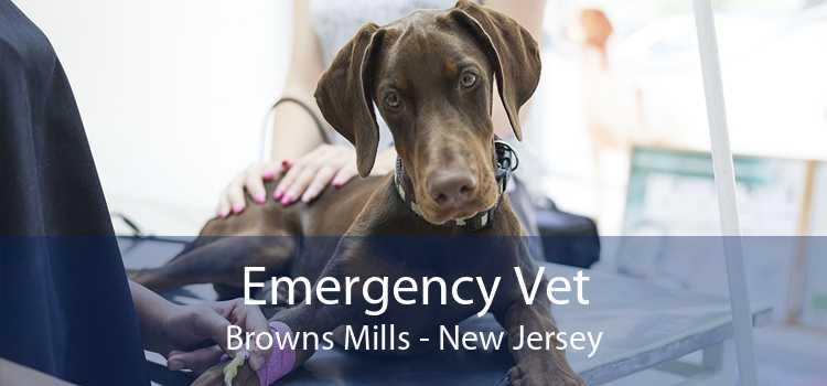 Emergency Vet Browns Mills - New Jersey