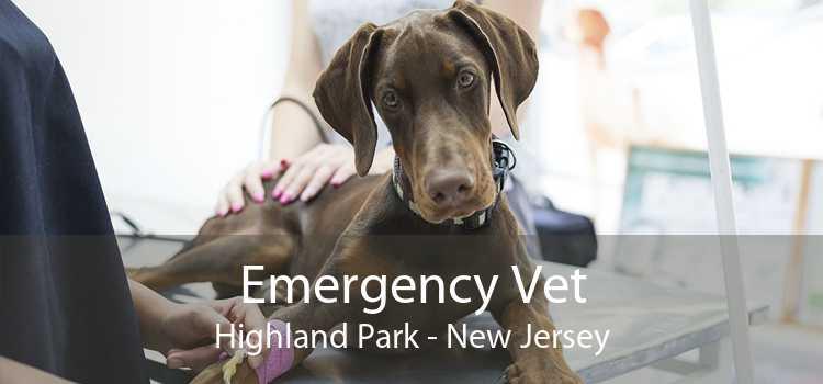 Emergency Vet Highland Park - New Jersey