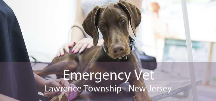 Emergency Vet Lawrence Township - New Jersey