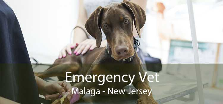 Emergency Vet Malaga - New Jersey
