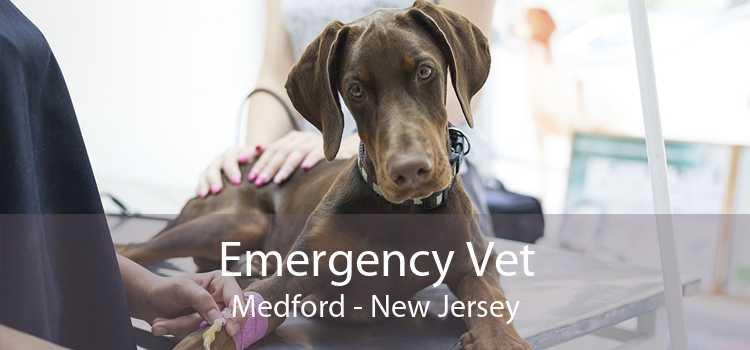 Emergency Vet Medford - New Jersey