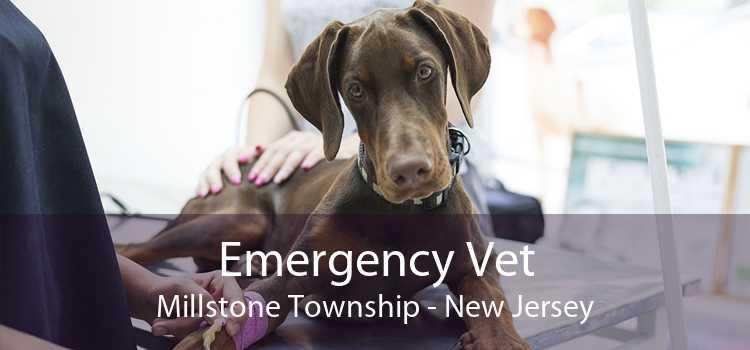 Emergency Vet Millstone Township - New Jersey