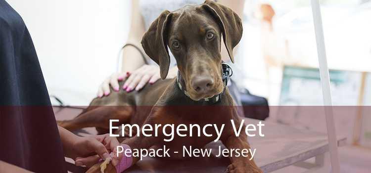 Emergency Vet Peapack - New Jersey