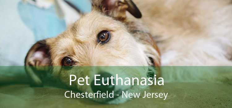 Pet Euthanasia Chesterfield - New Jersey