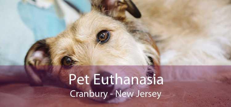 Pet Euthanasia Cranbury - New Jersey