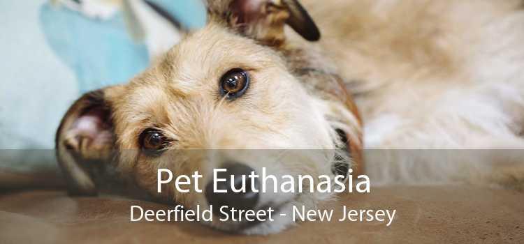 Pet Euthanasia Deerfield Street - New Jersey