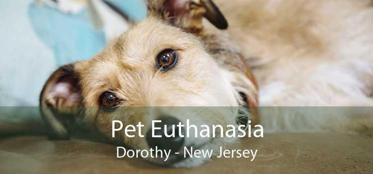 Pet Euthanasia Dorothy - New Jersey