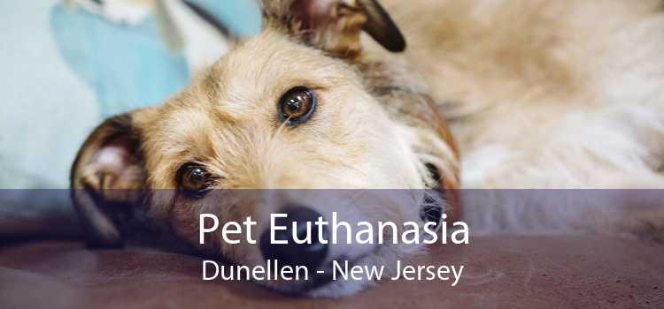 Pet Euthanasia Dunellen - New Jersey