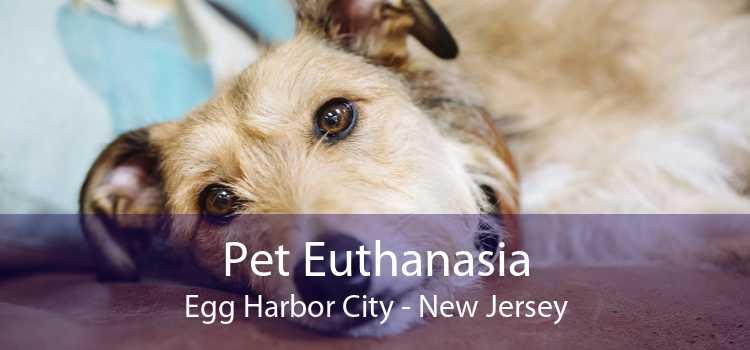 Pet Euthanasia Egg Harbor City - New Jersey