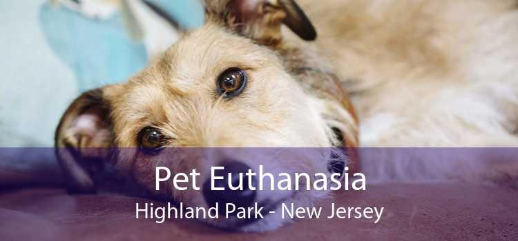 Pet Euthanasia Highland Park - New Jersey