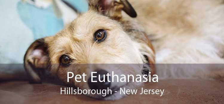 Pet Euthanasia Hillsborough - New Jersey