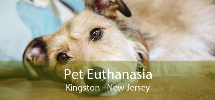 Pet Euthanasia Kingston - New Jersey