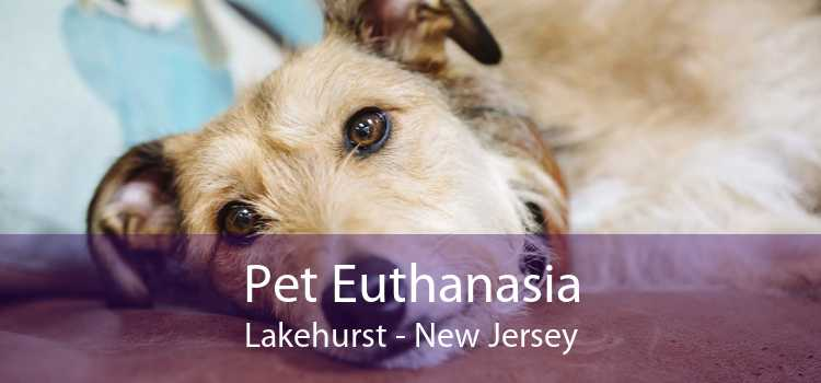 Pet Euthanasia Lakehurst - New Jersey