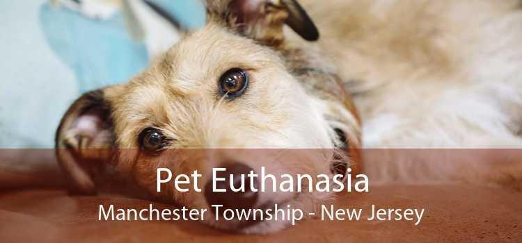 Pet Euthanasia Manchester Township - New Jersey