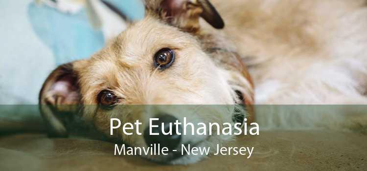 Pet Euthanasia Manville - New Jersey