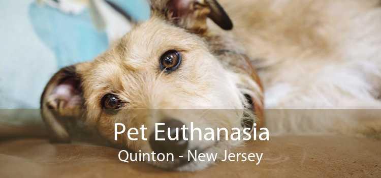 Pet Euthanasia Quinton - New Jersey