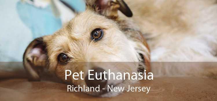 Pet Euthanasia Richland - New Jersey