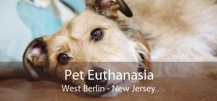 Pet Euthanasia West Berlin - New Jersey