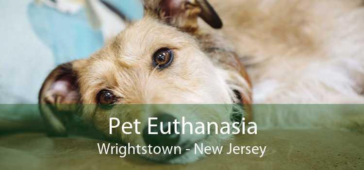 Pet Euthanasia Wrightstown - New Jersey