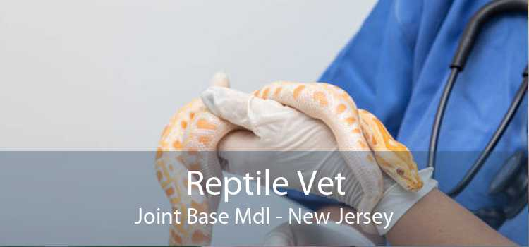 Reptile Vet Joint Base Mdl - New Jersey