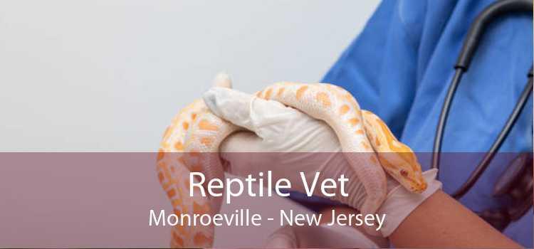 Reptile Vet Monroeville - New Jersey