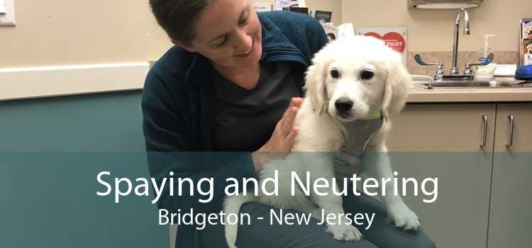 Spaying and Neutering Bridgeton - New Jersey