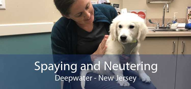 Spaying and Neutering Deepwater - New Jersey