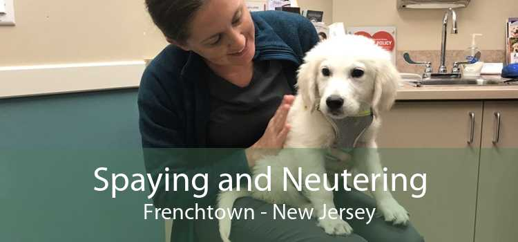 Spaying and Neutering Frenchtown - New Jersey