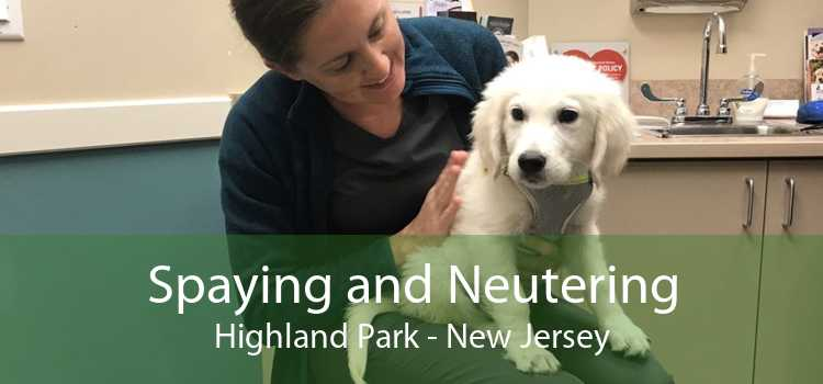 Spaying and Neutering Highland Park - New Jersey