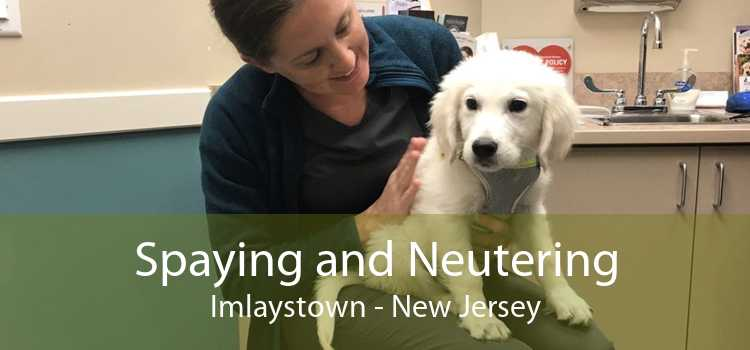 Spaying and Neutering Imlaystown - New Jersey