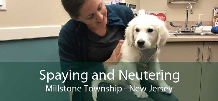 Spaying and Neutering Millstone Township - New Jersey