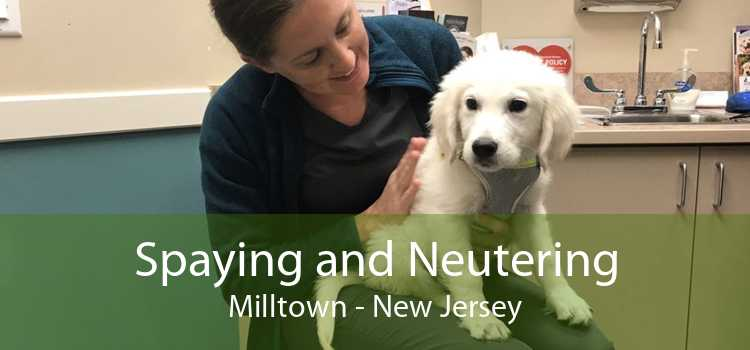 Spaying and Neutering Milltown - New Jersey