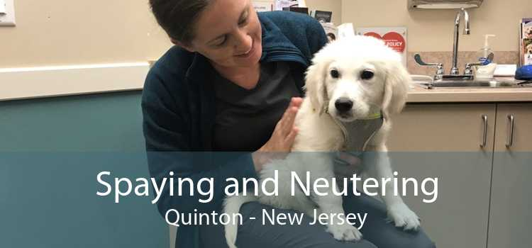 Spaying and Neutering Quinton - New Jersey