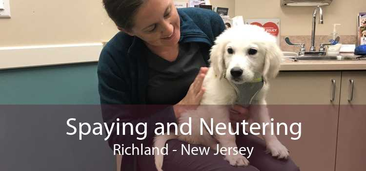 Spaying and Neutering Richland - New Jersey