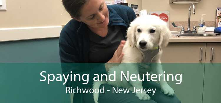 Spaying and Neutering Richwood - New Jersey