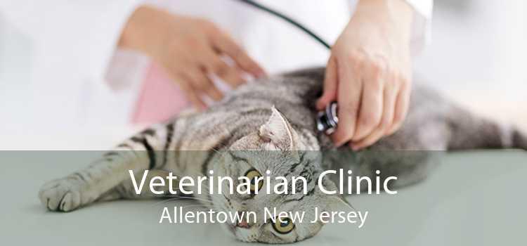 Veterinarian Clinic Allentown New Jersey