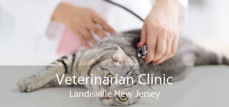 Veterinarian Clinic Landisville New Jersey