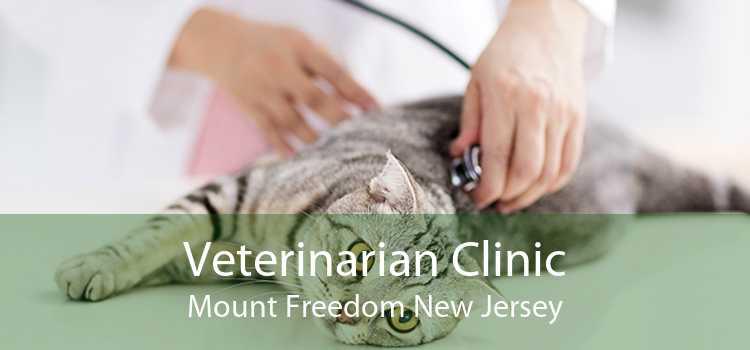 Veterinarian Clinic Mount Freedom New Jersey
