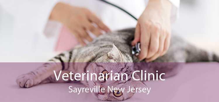 Veterinarian Clinic Sayreville New Jersey